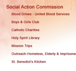 Social_Action_Com